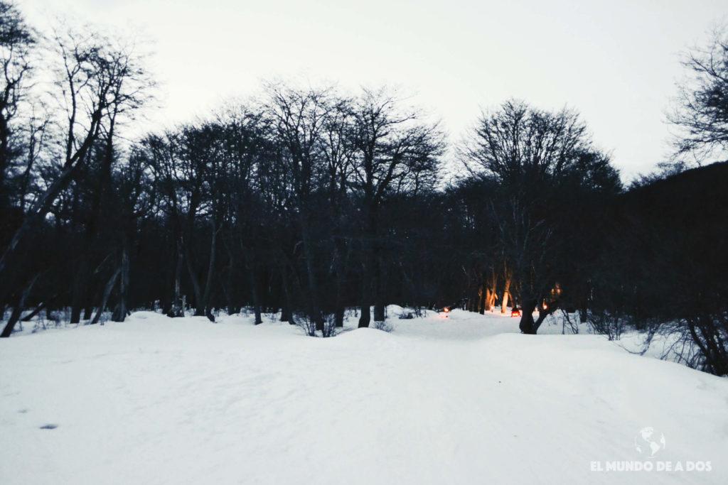 Sendero por el bosque hacia el refugio. Nieve y Fuego Ushuaia