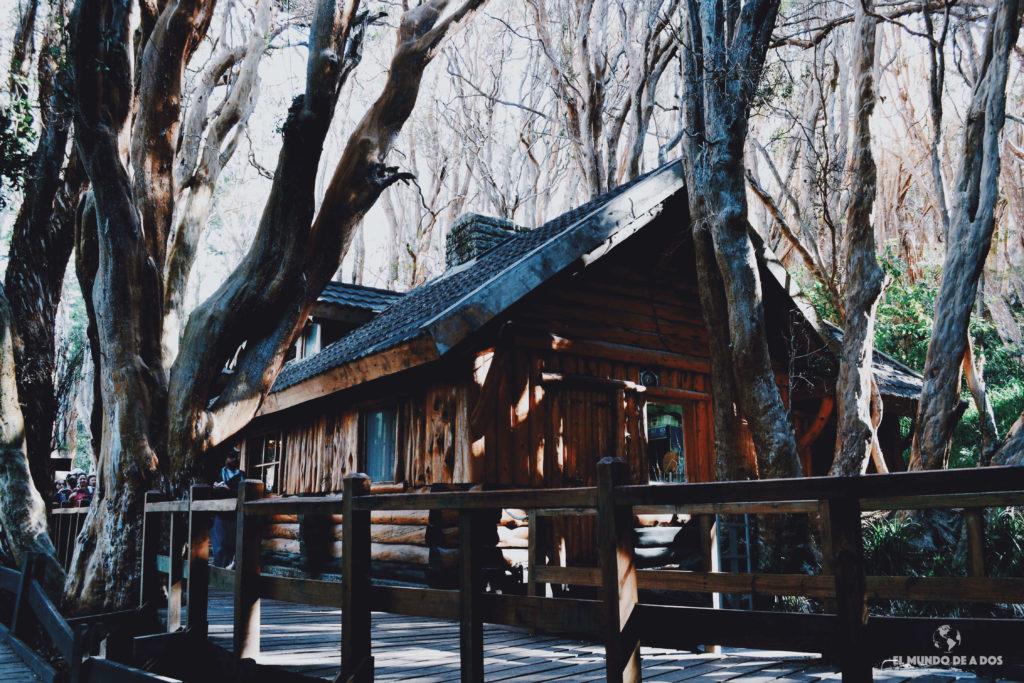 Casita de té en bosque de arrayanes. Isla Victoria y bosque de arrayanes.