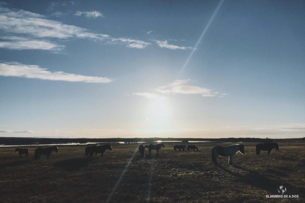 Atardecer en Islandia. Ruta por Islandia en 10 días